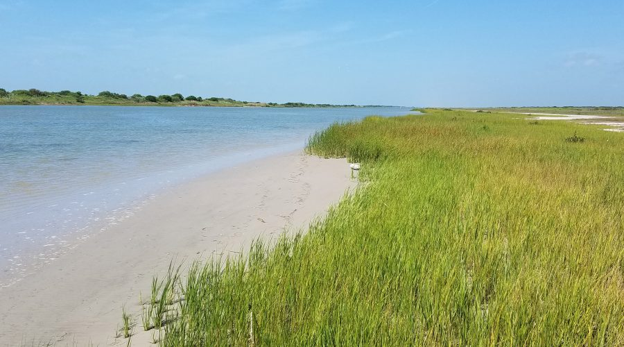 Conserving Endangered Species Habitat in Coastal Texas